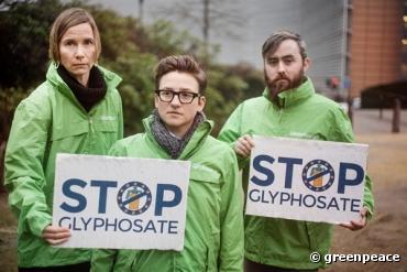 Glyphosate : plus de 80 plaintes pénales déposées pour mise en danger de la vie d'autrui