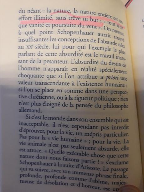 « En présence de Schopenhauer » de Houellebecq, chronique