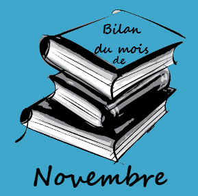 Mois de Novembre: Que s'est-il passé sur le blog? #1