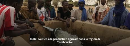 Mali : Le CICR concentre ses efforts sur Ménaka et Tombouctou