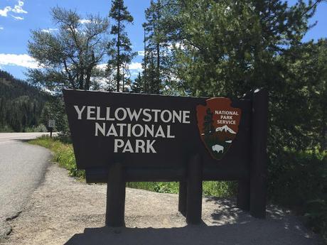 Yellowstone coté nature