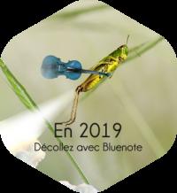 En 2019, décollez avec Blue note systems !