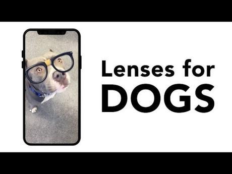 Snapchat a des nouveaux filtres pour les chiens !