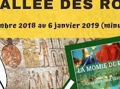 L'escape game Vallée rois