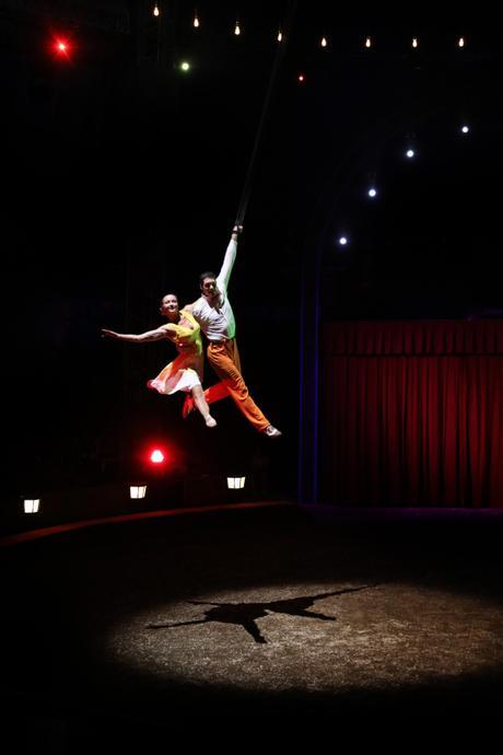 (Rendez-vous) Alexis Gruss fête les 250 ans de l'art du cirque