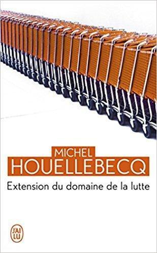 Chronique de « Extension du domaine dans la lutte » de Michel Houellebecq