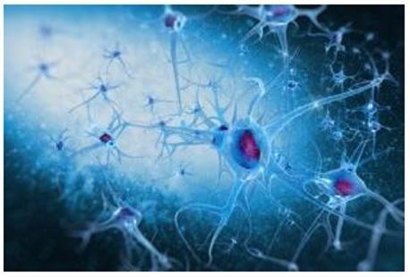 Un outil basé sur l'intelligence artificielle permet de détecter, de manière plus précoce, une forme courante d'épilepsie chez l'Enfant