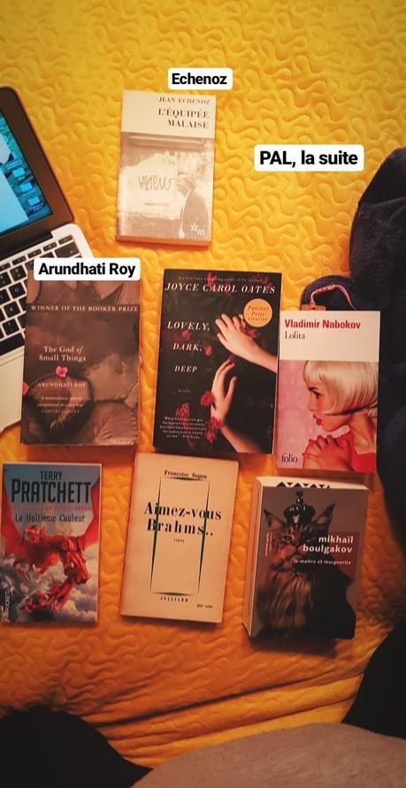 Les livres à lire en 2019 | PAL (pile à lire) | Prévisions livresques
