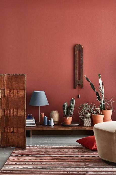 couleur terracotta salon séjour mur peinture cactus pot en terre tapis ethnique