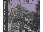 Dans delta Mékong (3): l'envoûtement