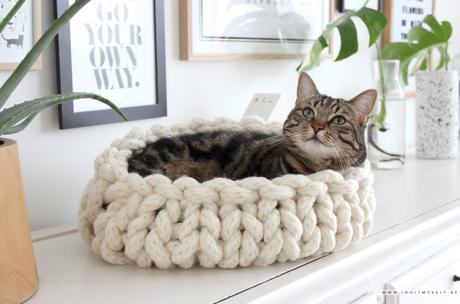 DIY : Un panier pour chat