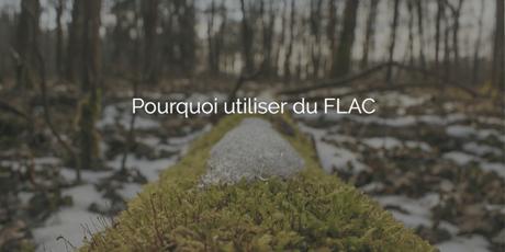 Pourquoi préférer le FLAC au MP3