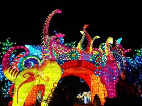 Espèces en voie d'illumination jardin des plantes ménagerie paris festival des lumières balade nocturne