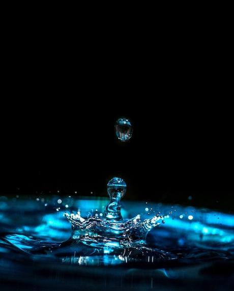 green house réduire sa consommation d'eau chez soi maison - blog déco - clem around the corner