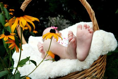 chambre bébé plante