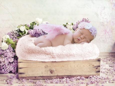 chambre plante bébé