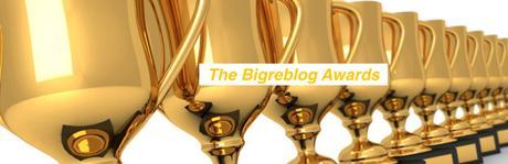 Les Bigreblog Awards sont là! (Divers)