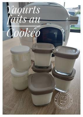 Recette Yaourts au Cookéo