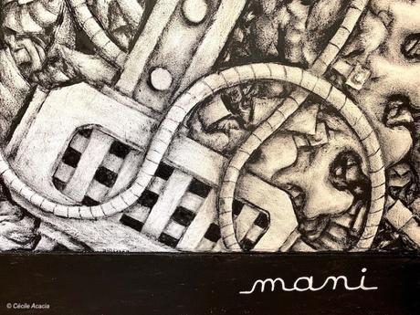 « La mécanique du vide » de Mani