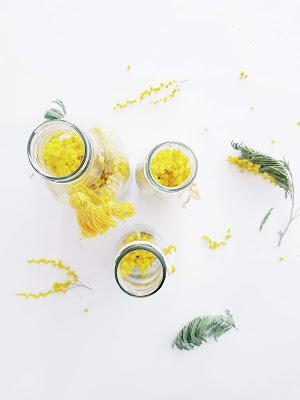 [DIY] Mimosa en bouteille