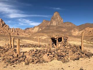 631_  Des Genêts au nord au mont Tahat dans le Désert _4