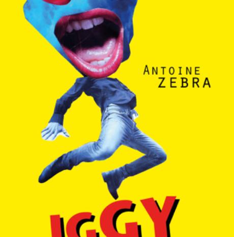 #Livre - #Musique - Iggy Salvador premier roman de DJ Zebra revient sur l'histoire du bootleg !