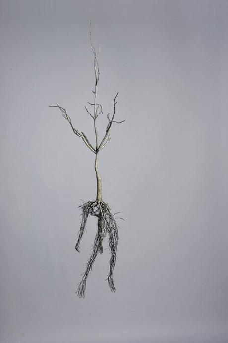 Les sculptures poétiques de Sun-Hyuk Kim