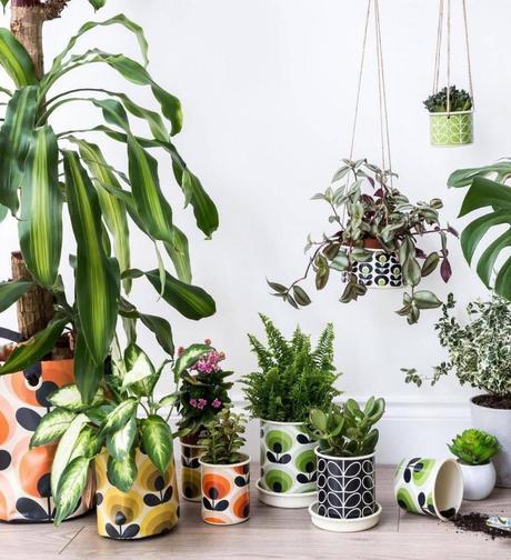 style rétro jardinage pots plantes - blog déco - clem around the corner