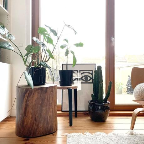 pierre papier ciseaux plantes bois nature - blog déco - clem around the corner