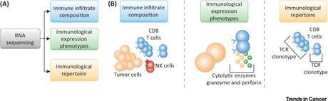 #trendsincancer #cancer #ARN #séquençage #immunothérapie Séquençage de l'ARN du Microenvironnement Tumoral dans l'Immunothérapie de Précision du Cancer
