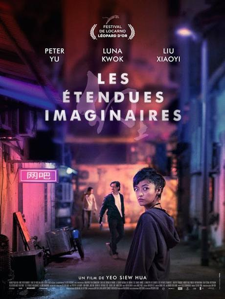 http://fuckingcinephiles.blogspot.com/2019/03/critique-les-etendues-imaginaires.html