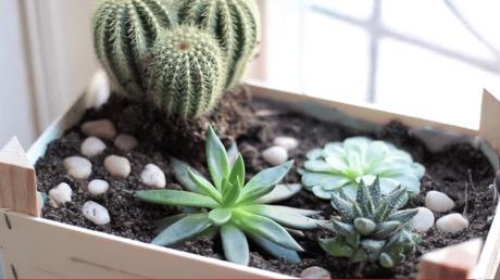 idée déco récup jardin cagette bois plantes - blog déco - clem around the corner