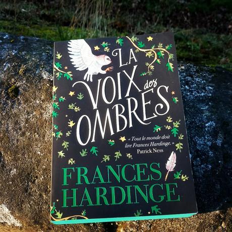 Le livre du vendredi : La Voix des Ombres