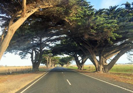 Comment préparer son road trip en Australie