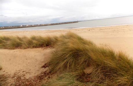 les boniments de la plage