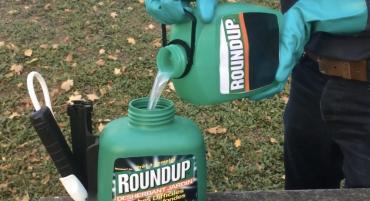 Le Roundup reconnu de nouveau comme cause de cancer aux Etats-Unis