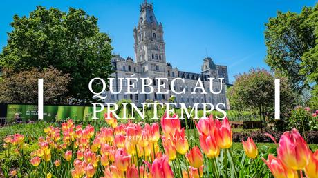 Québec spring printemps