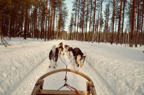 Découverte de la Laponie en famille