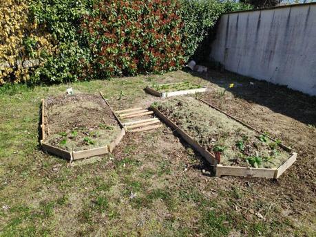 Mes premiers pas vers la permaculture