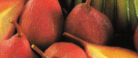 Charlotte de dindonneau aux poires