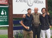 Zayat aroma essentiels