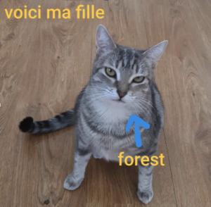 FRANCOUVERTES 2019: 10 questions absurdes à Fria Moeras