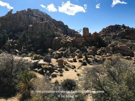 {Joshua Tree} Hidden Valley Nature Trail
