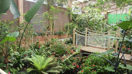 jardin aux papillons de vannes