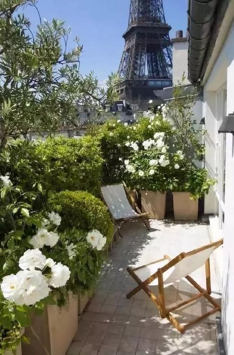 plante balcon ouest hortensia blanche balcon tour eiffel - blog déco - clem around the corner