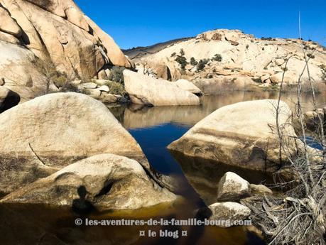 {Joshua Tree} Barker Dam
