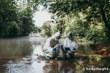 Les cours d'eaux européens pollués par les pesticides et les médicaments vétérinaires