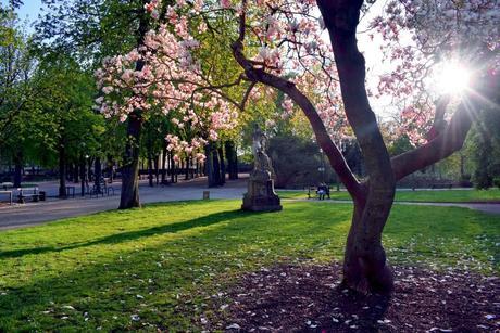 Dans le parc de la Pépinière © French Moments