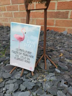 La meilleure façon de marcher est celle du flamant rose de Diane Ducret