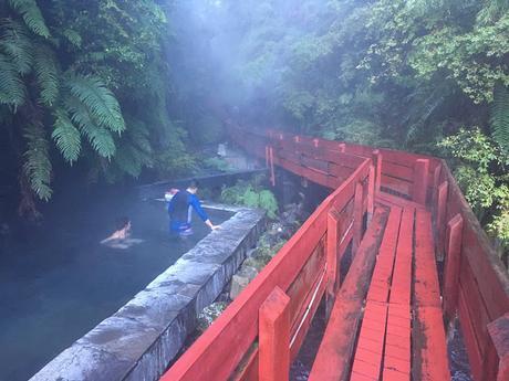Jour 2 : Pucón et l'eau chaude